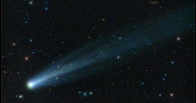 Could We Live Inside a Comet?
